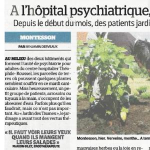 A l'hôpital psychiatrique l'apaisement se cultive
